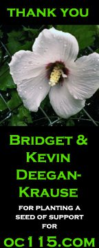 seed01_bridget and kevin deegan krause