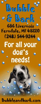 bubble_and_bark_ad_ferndale115