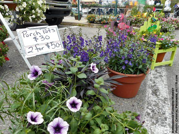 20140607birmingham_farmers_market06
