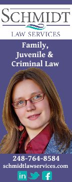 lisa schmidt law
