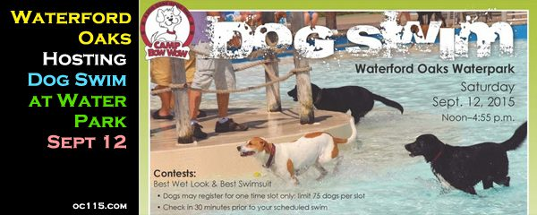 Waterford oaks hosting dog swim sept 12 oakland county times - Waterford crystal swimming pool times ...