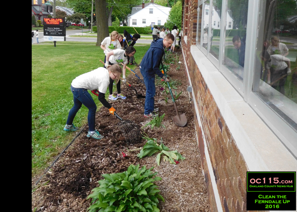 20160522_clean ferndale up_8888