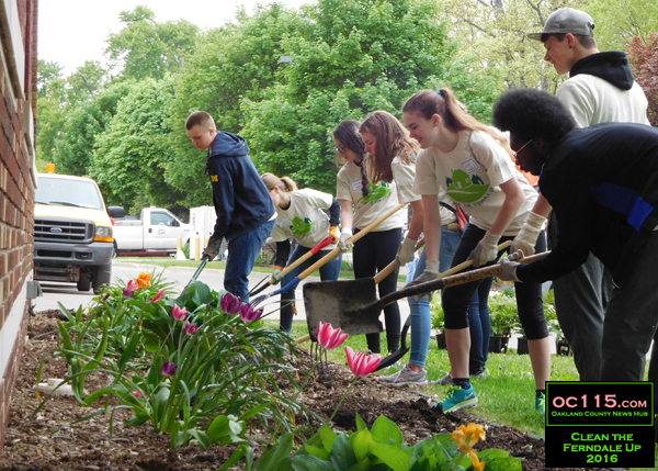 20160522_clean ferndale up_999999999