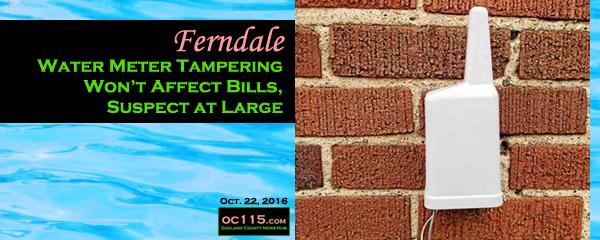 City Of Ferndale Michigan Water Bill